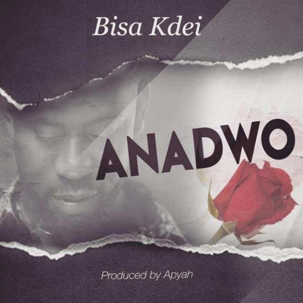 Bisa Kdei - Anadwo (Prod. By Apya)