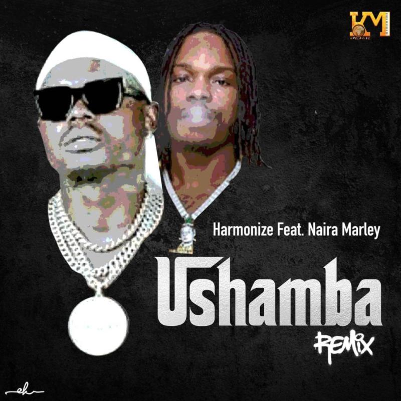 Harmonize - Ushamba (Remix) Ft Naira Marley