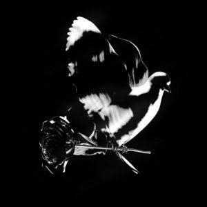 Pop Smoke - Enjoy Yourself (Remix) Ft Burna Boy