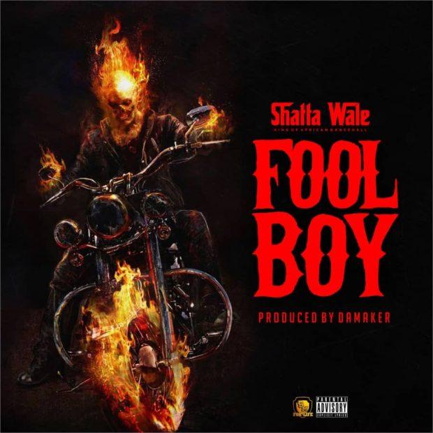 Shatta Wale - Fool Boy (Buffalo Soulja Diss) (Prod. by Da Maker)