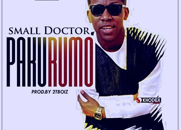 Small Doctor - Pakurumo